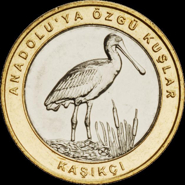 Турция монета 1 лира Обыкновенная колпица, реверс