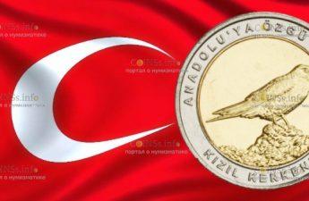 Турция монета 1 лира Пустельга