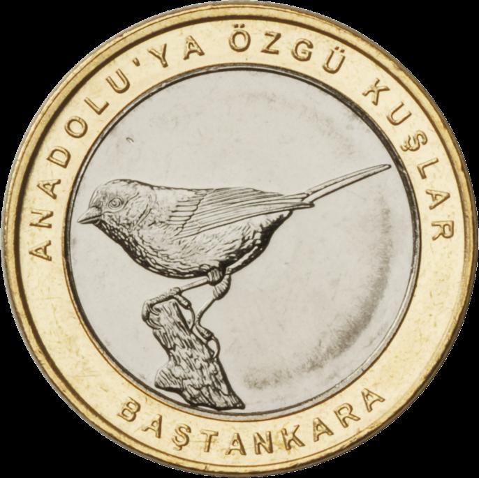 Турция монета 1 лира Синица, реверс