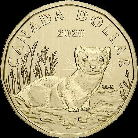 Канада монета 1 доллар Американский хорек, реверс