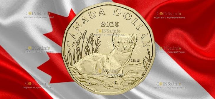 Канада монета 1 доллар Американский хорек