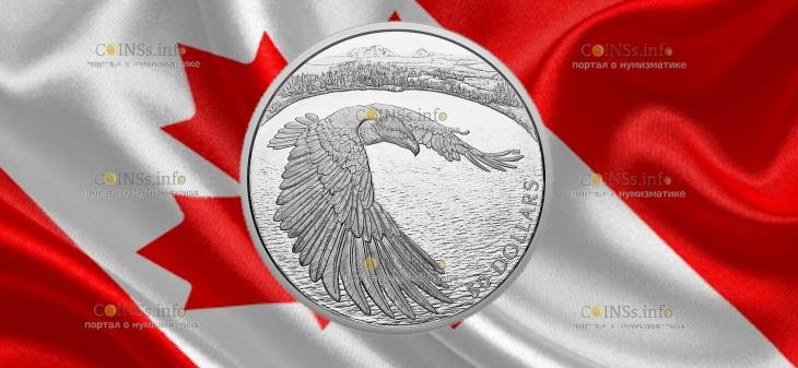 Канада монета 50 долларов Белоголовый орел