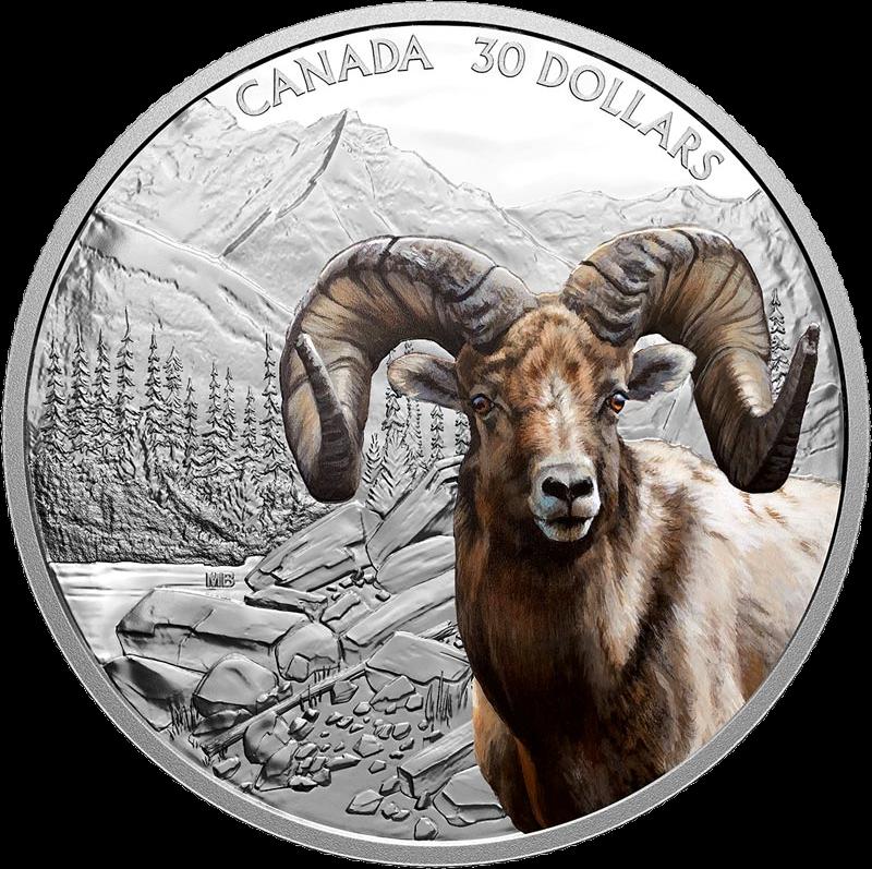Канада монета 30 долларов Толсторог, реверс