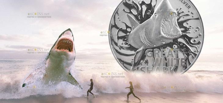 Австралия монета 100 долларов Большая белая акула