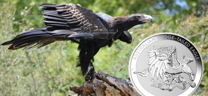 Австралия монета 1 доллар Австралийский клинохвостый орел