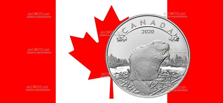 Канада монета 10 долларов Бобер