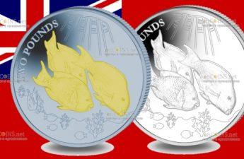 Британские территории в Индийском океане монета 2 фунта Рыбы-попугаи
