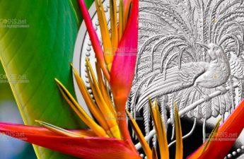 Папуа Новая Гвинея монета 10 кипа Райская Птица
