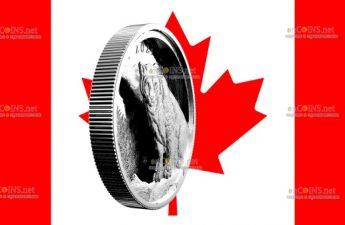 Канада монета 50 долларов Пума