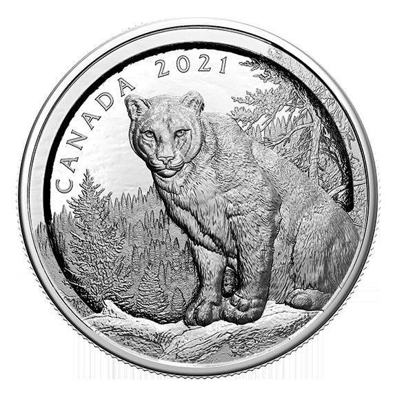 Канада монета 50 долларов Пума, реверс