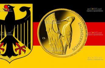 Германия монета 20 евро Черный Дятел