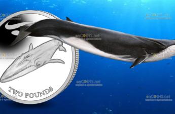 Южная Джорджия и Южные Сандвичевы острова монета 2 фунта Финвал