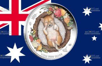 Австралия монета 50 центов Мечтающий во сне Динго