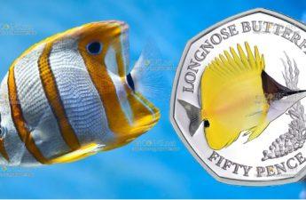 Британские территории в Индийском океане монета 50 пенсов Рыба-бабочка