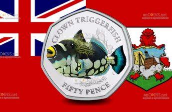 Британские территории в Индийском океане монетау 50 пенсов Крупнопятнистый Спинорог