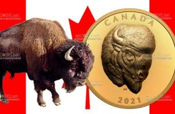 Канада монета 250 долларов Бизон